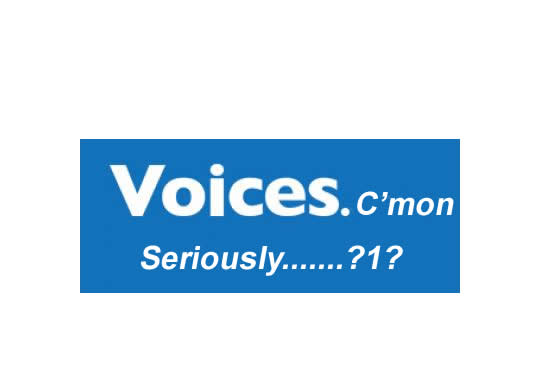 Voices.com review by professional voiceover talent Todd Schick