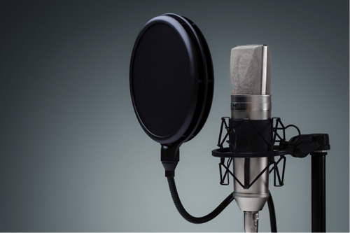 radio television voice imaging services